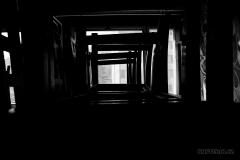 IMG_2334_BW-web_1200x